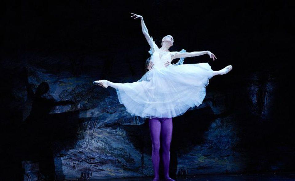 «Мировые балетные каникулы»
