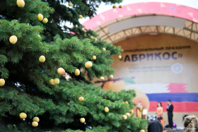 «Абрикос»: праздник со вкусом лета