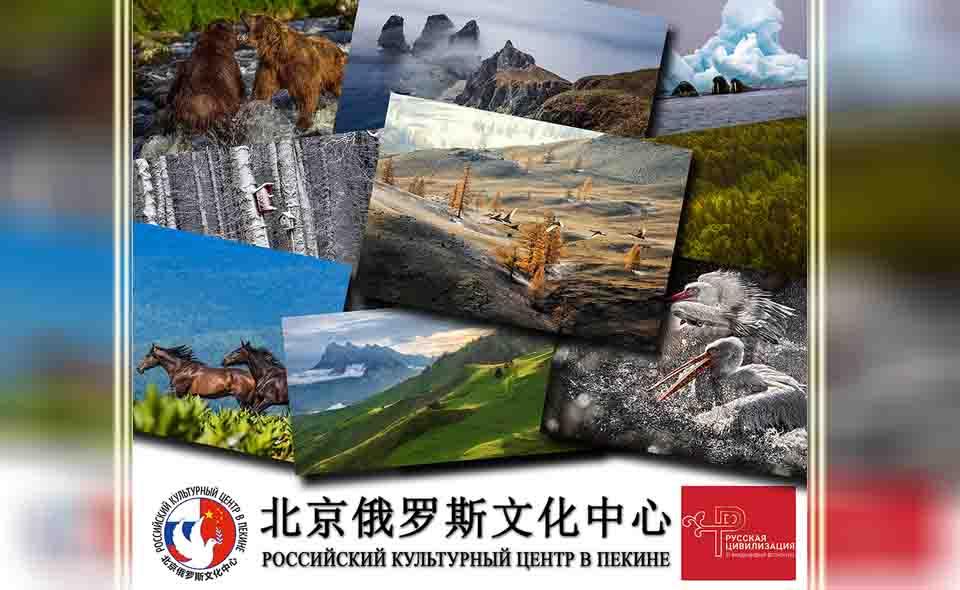 Китайцы встретят Новый год вместе с «Русской цивилизацией»